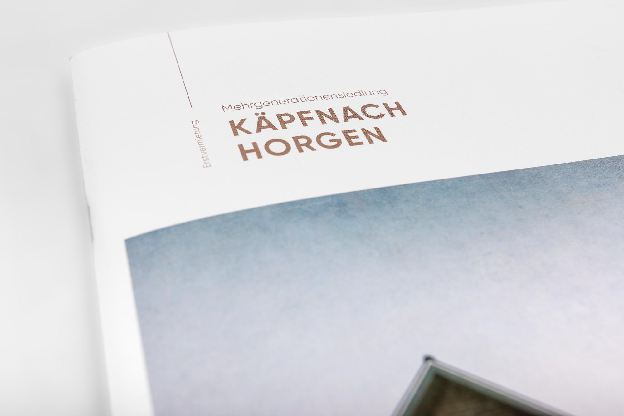 Käpfnach-6
