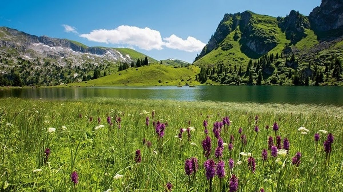 Switzerland. get natural. Diemtigtal Nature Park in the Bernese Oberland. Picturesque Lake Seeberg (1,831 m) in the upper end of a small side valley, on the way to Zweisimmen. This is an  attractive hiking and biking region. Schweiz. ganz natuerlich. Naturpark Diemtigtal im Berner Oberland. Der malerische Seebergsee (1'831 m) am oberen Ende eines kleinen Seitentals, Uebergang nach Zweisimmen. Attraktives Wander- und Bike-Gebiet. Suisse. tout naturellement. Parc naturel Diemtigtal dans l'Oberland bernois. Le pittoresque lac de Seeberg (1'831 m) au fond d'une petite vallee laterale, passage vers Zweisimmen. Region appreciee des marcheurs et adeptes du VTT.Copyright by: Switzerland Tourism - BAFU  By-Line: swiss-image.ch/Roland Gerth