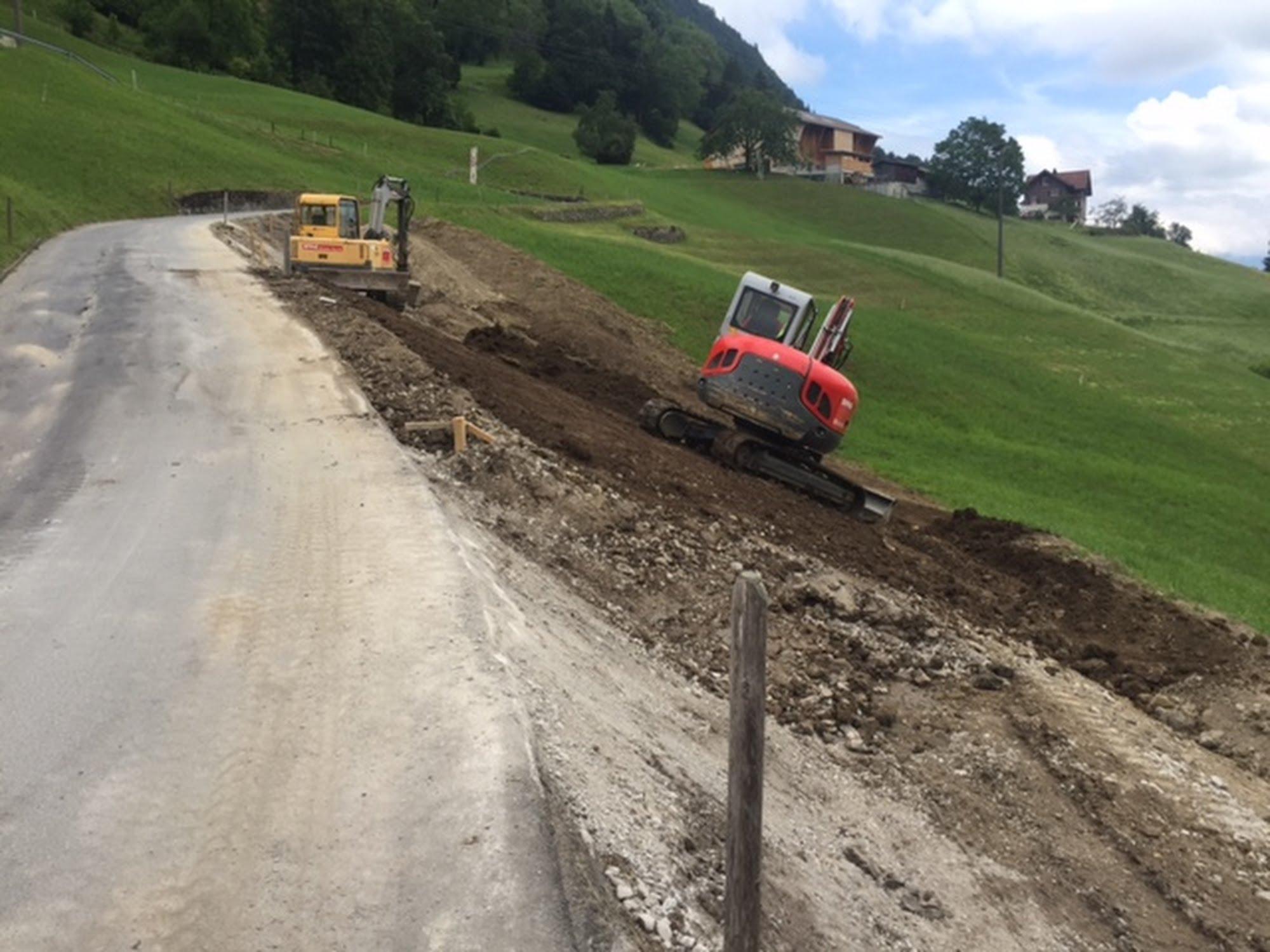 Instandsetzung Wiesenbergstrasse
